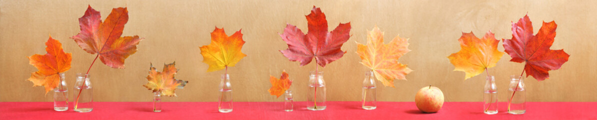 long still life with colorful maple leaves and apple
