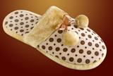 Fluffy slipper poster