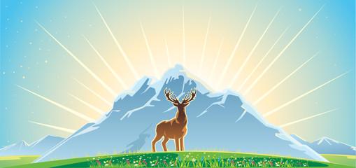 Mountan landskape and deer
