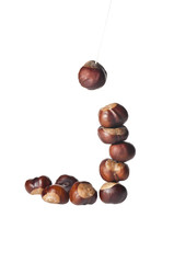 conker column isolated