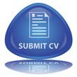 """""""Submit CV"""" Button"""