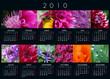 Calendrier 2010 fleurs-1
