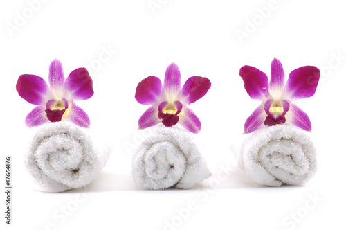 Row of orchid on rolled up towel