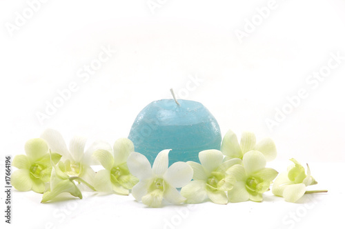 Orchid and blue candle