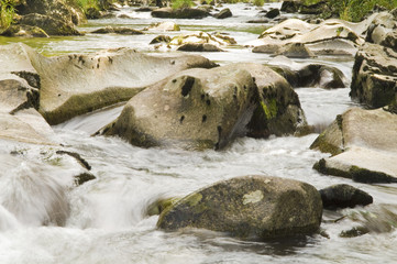 Wildwasser