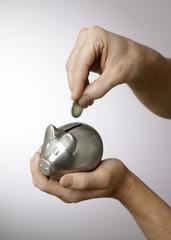 cochon tirelire main argent économies