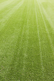 Synthetic grass poster