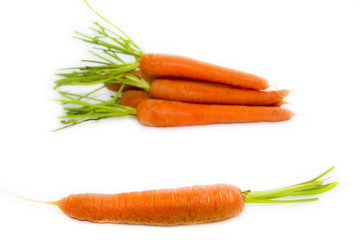 zanahorias aisladas en fondo blanco