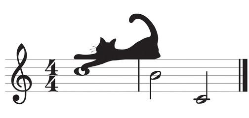 gatti e musica