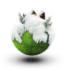 winter panet