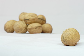 A nut with group of other nuts in background