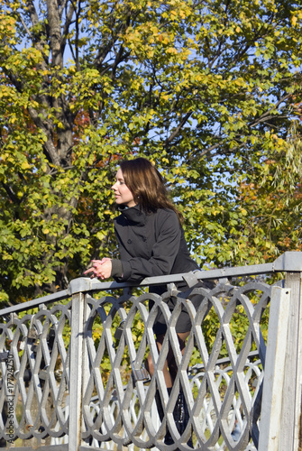 On the bridge in autumn park