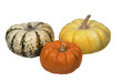 Three ornamental pumpkins on white