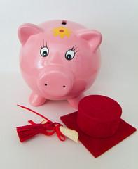 Graduate pig moneybox