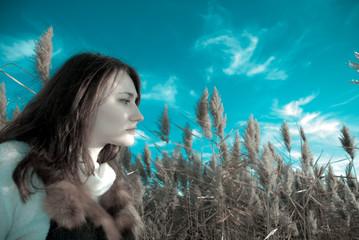 autumn reeds view