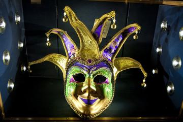 Mardi Gras Mask in Case