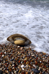 An image of hat at the beach with pebble stones
