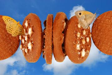 Biscotti e farfalle
