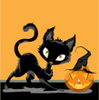 roleta: black cat with pumpkin