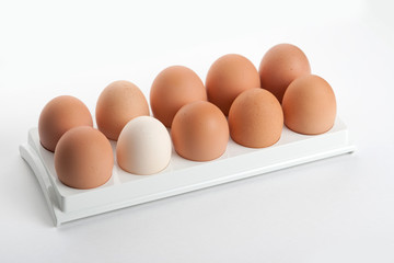 the hen's eggs in egg holder