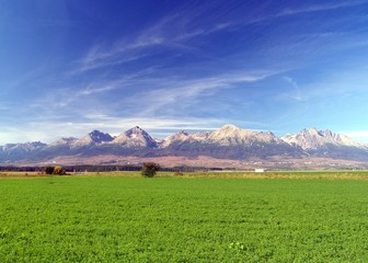 A view of The Tatra Mountains & field in summer, Slovakia.