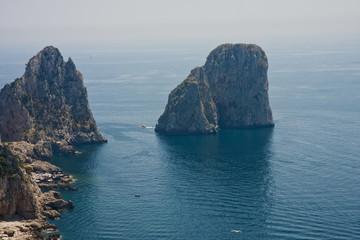 Capri Rocks with Seagull