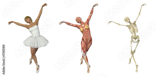 Anatomical Overlays - Ballet