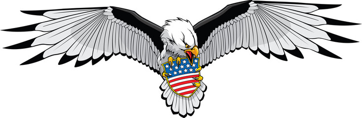 Eagle stars and stripes