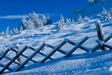 Snowbound fence