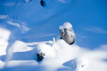 snowy stump