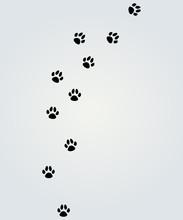 """Постер, картина, фотообои """"animals"""""""