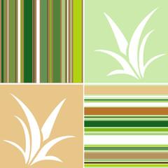 Aloe e strisce