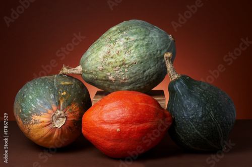 Studio shot of pumpkins