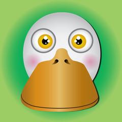 Cabeza de pato