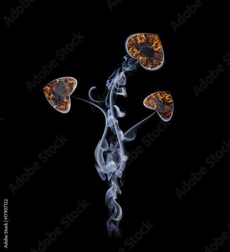 Flower in the form of hearts from a smoke and fire
