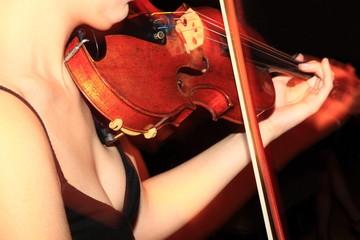 Violine, Geige, Musikerin, Lifemusik