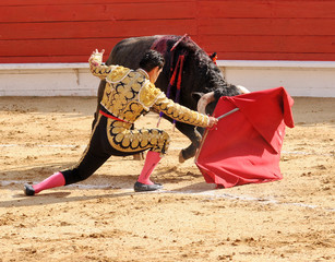 Matador Kneeling