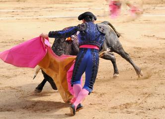 Matador in Blue