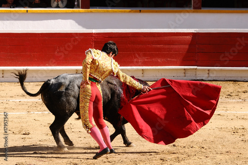 Leinwandbild Motiv Matador with Cape