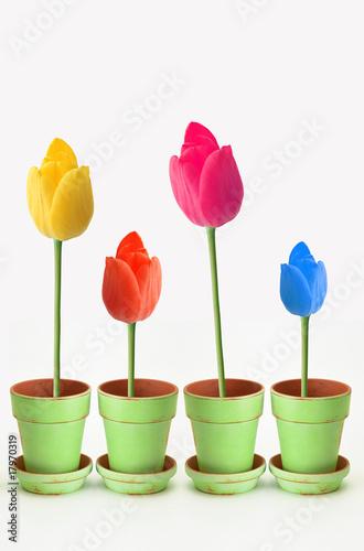 FLOWERS CONCEPT