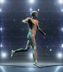 Portuguese anatomical man running