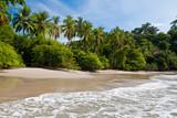 Palm trees on the beach near with blue sky - Fine Art prints