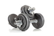 canvas print picture - set of dumbells on white