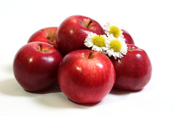 Juicy, ripe, red apples with the flowers of camomile.