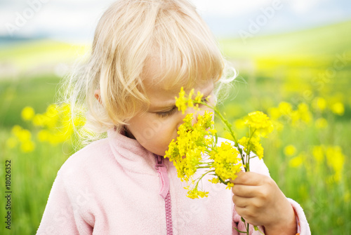 Little girl smells flowers in  field