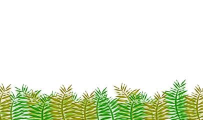 Vegetazione