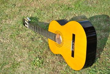 Chitarra sull'erba