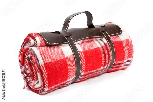 Packed blanket for sunday's picnic - 18073371