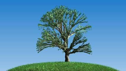 growing tree, CGI