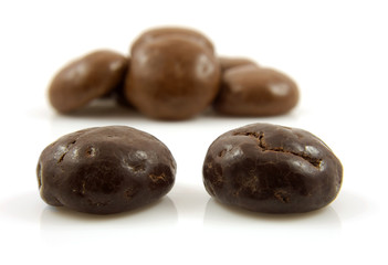 Couple of chocolate ginger nuts in closeup over white background